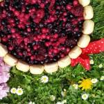 Charlotta s tvarohem a lesním ovocem