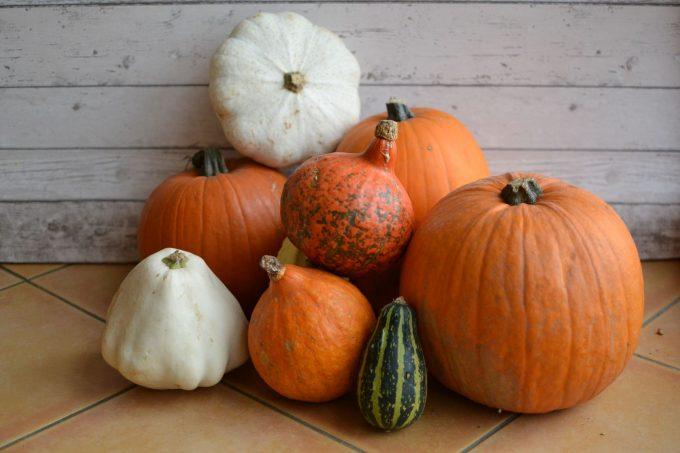 Dýňobraní – užívejme si podzimní sezóny dýní