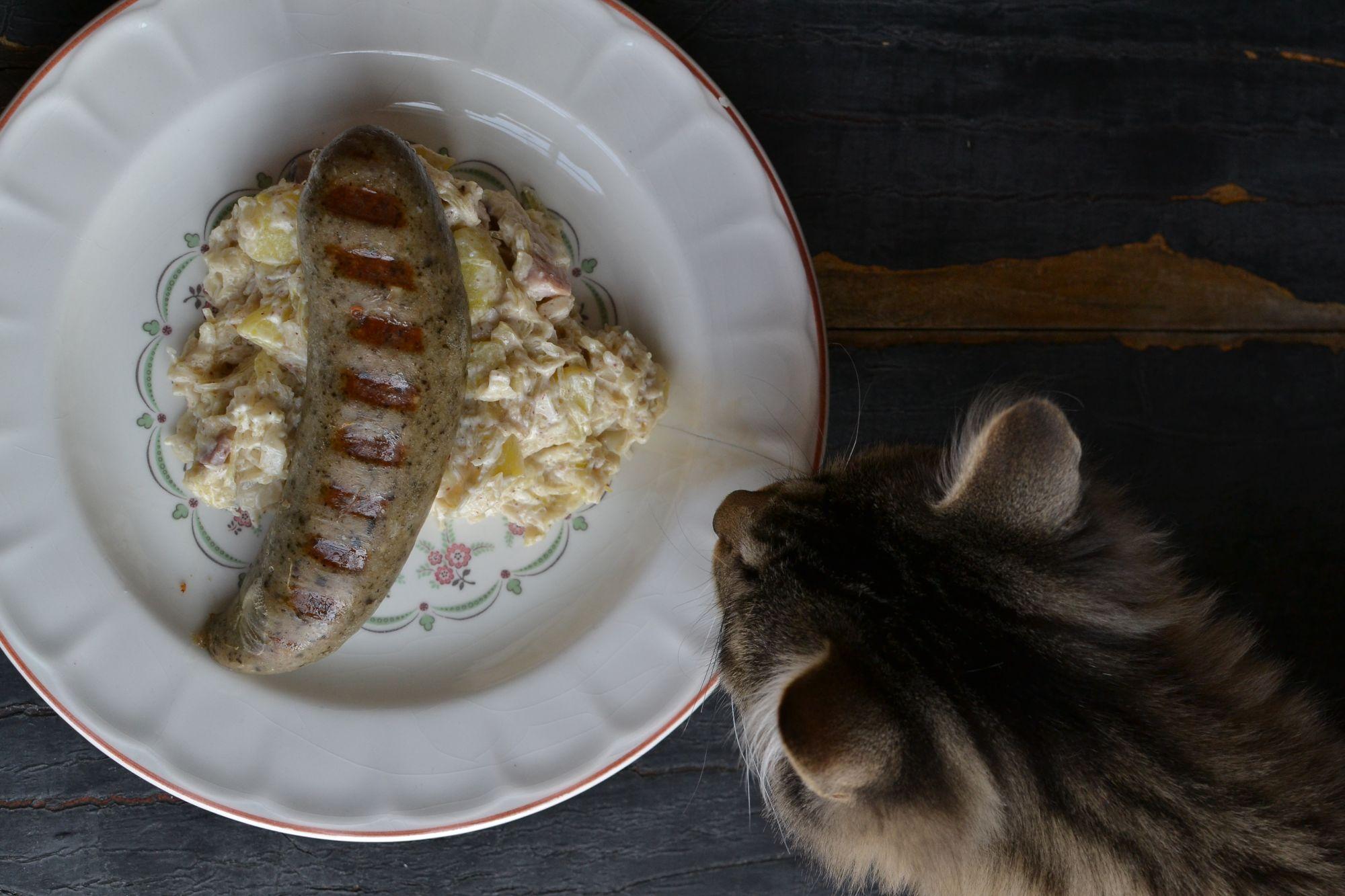 Grilovaná jitrnice s bramborovo zelovým salátem
